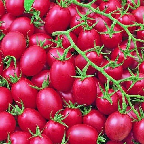 Pink-Grape